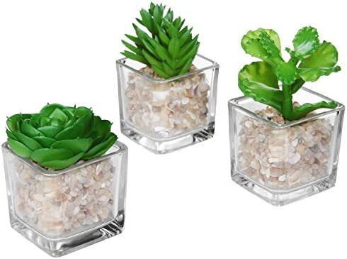 Modern Clear Glass Planter Pot Faux Plants Mini Potted Artificial Succulent Plants, Set of 3 Assortment 2