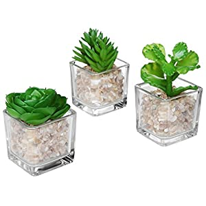 Modern Clear Glass Planter Pot Faux Plants/Mini Potted Artificial Succulent Plants, Set of 3 (Assortment 2)