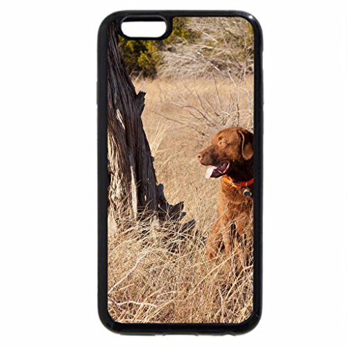 iPhone 6S / iPhone 6 Case (Black) Dog