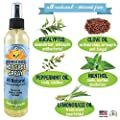 New Bitter Lemon Spray   Stop Biting and Chewing for Puppies Older Dogs and Cats   Anti Chew Spray Puppy Kitten Training Treatment   100% Non Toxic   Made in USA (Hot Spot Spray)