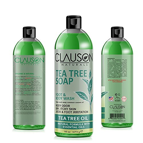 - Organic Tea Tree Oil Body Wash - 16oz - a Rich Anti-fungal Body Wash Relieves Athlete's Foot, Jock Itch, Sunburn & Rash Irritation & Blocks Body, Armpit & Smelly Foot Odors