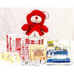 Valentine's Day Student / Military Care Package - Swiss Miss Hot Chocolate - Hershey Kisses - Bear - Mug