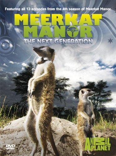 Meerkat Manor - Series 4 [Region 2 DVD + Tagged On Classic Keep Calm Pin Badge]