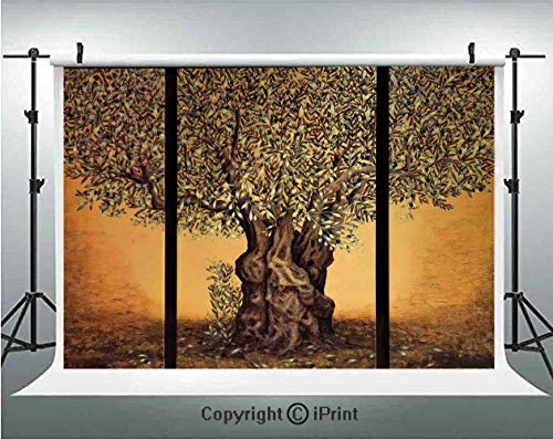 (Tree of Life Photography Backdrops Triptych of an Old Mature Olive Tree Mediterranean Greece Style Nature Graphic Decor,Birthday Party Background Customized Microfiber Photo Studio Props,5x3ft,Multi)
