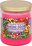 Smoke Odor Exterminator 13oz Jar Candle, Trippy Hippie, 13 oz