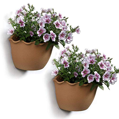 (T4U Resin Wall Hanging Planter Apricot Small Set of 2, Wave Edge Pottery Style Plastic Flowers Pot for Home Office Garden Porch Wall Decoration Indoor Outdoor Best Gift)
