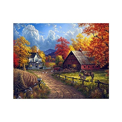- 5d Diamond Painting Kits for Adults Kids Set New Full Drill Diamond dotz for Home Wall Decor Paint by Number Kits - Forest Ranch Horse