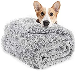 LOCHAS Luxury Velvet Fluffy Dog Blanket 30''x40'', Extra Soft and Warm Sherpa Fleece Pet Blankets for Dogs Cats, Plush Furry Faux Fur Puppy Throw Cover, Grey Medium