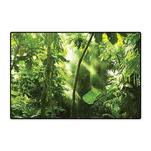 Forest Floor Mat for Kids Summer Tropical Monsoon