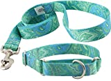 Country Brook DesignTM Patterned Martingale Dog Collar & Leash Set-Green Paisley-L