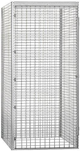 Salsbury Industries Bulk Storage Locker Single Tier Starter, 48-Inch, 48-Inch