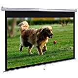 "Dansung Movie Projector Screen Manual Pull Down 72"" 4:3 Mountable HD Projection Spectrum for Indoor Home Theater Business Office"