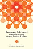 Democracy Reinvented 1st Edition