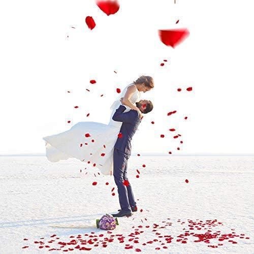 dispersi/ón de Mesa Naler 2000 Piezas de p/étalos de Rosa de Seda Artificial Rojos para el d/ía de San Valent/ín proponer Flores de Boda Confeti