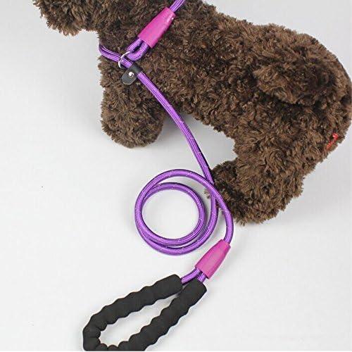 free shipping yueton Adjustable Loop Slip Lead Rope Pet Dog Reflective Stripe Nylon Leash with Sponge Handle