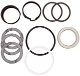 CASE D42869 HYDRAULIC CYLINDER SEAL KIT
