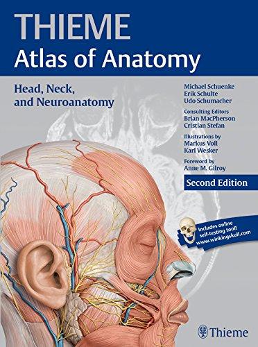 Thieme Atlas of Anatomy Head, Neck, and Neuroanatomy (2nd 2015) [Schuenke, Schulte & Schumacher]