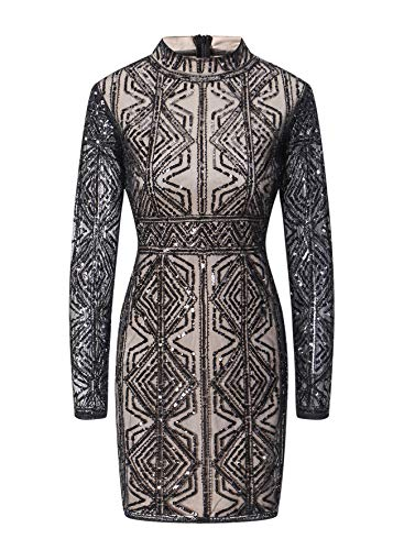 (VVMCURVE Women's Mesh Sequin Embroidery Slim Long Sleeve Sexy Bodycon Costume Party Club Dress (X-Large, Black))