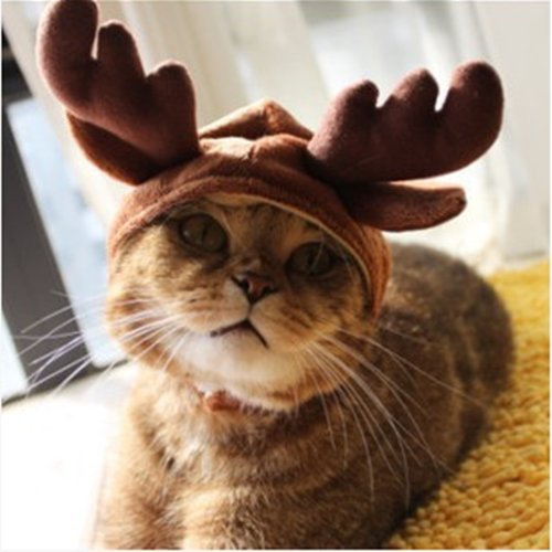 AUCH New/Cute Fashion Colorful Pet Dog/Cat Hat Classics Collection Pet Costume for Christmas Festival,Deer Design,Small