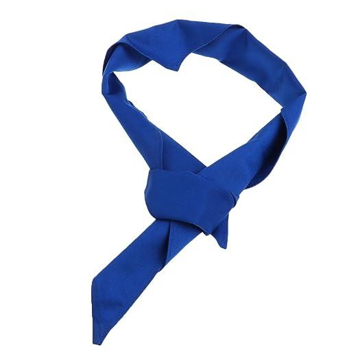 Almencla Chefs Corbatas Corbata Profesional Clubbers Sudor ...