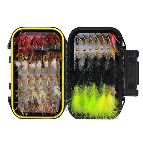 Croch 100pcs Fly Fishing Dry Flies Wet Flies Assortment Kit with Waterproof Fly Box for Trout Fishing (Best Fly Box Trout Fishing)