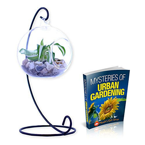 Noahs Clear Glass Globe Hanging Planter Terrarium with Black or White Stand for Indoor and Outdoor Use - Tea Light Candle Potpourri Holder Lantern Ball - Includes Mysteries of Urban Gardening