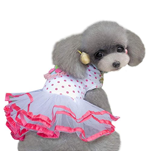 2017 Hot Pet Dress! AMA(TM) Pet Puppy Small Dog Clothes Polka Dots Princess Tutu Dress Cherry Lace Skirt Doggy Apparel Costume (XS, (Doggy Clothes)