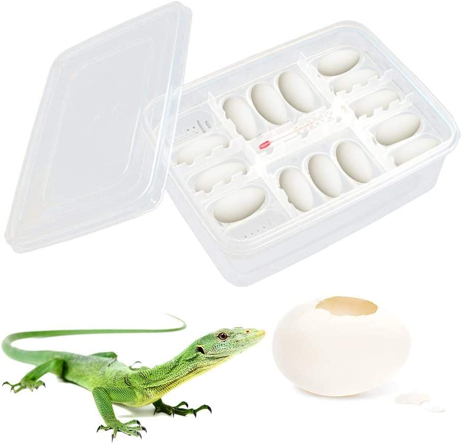 heresell 16PCS Reptile Breeding Box Reptile Egg Incubators Lizard Climbing Pet Senior Hatching Egg Tray Hatchery Box Incubator For Hatching Gecko,lizards,Snake