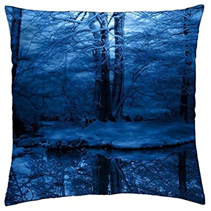 Amazon DUSK IN WINTER Throw Pillow Cover Case 40 Home Delectable Winter Throw Pillow Covers