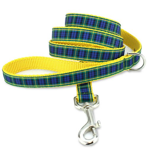 Plaid Dog Leash, Gordon Tartan
