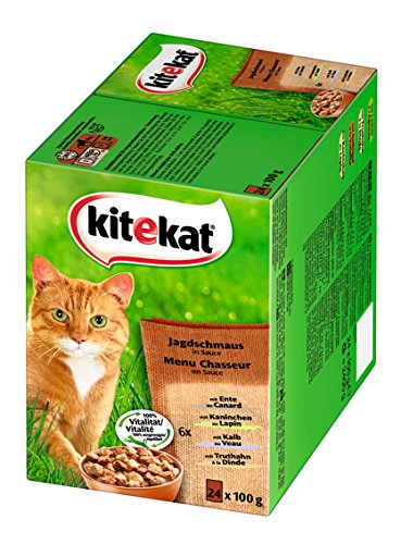 Kitekat Katzenfutter Jagdschmaus in Soße, 48 Beutel (2 x 24 x 100 g)