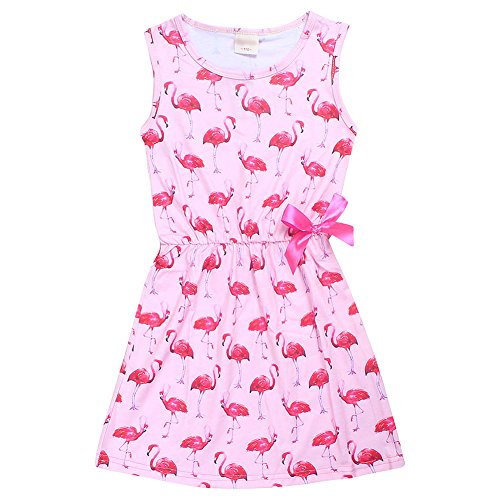 FAIRY COUPLE Little Girl's Sleeveless Flamingo Floral Printed Swing Party Dress KHR009 Pink (Pink Flamingo Dress)