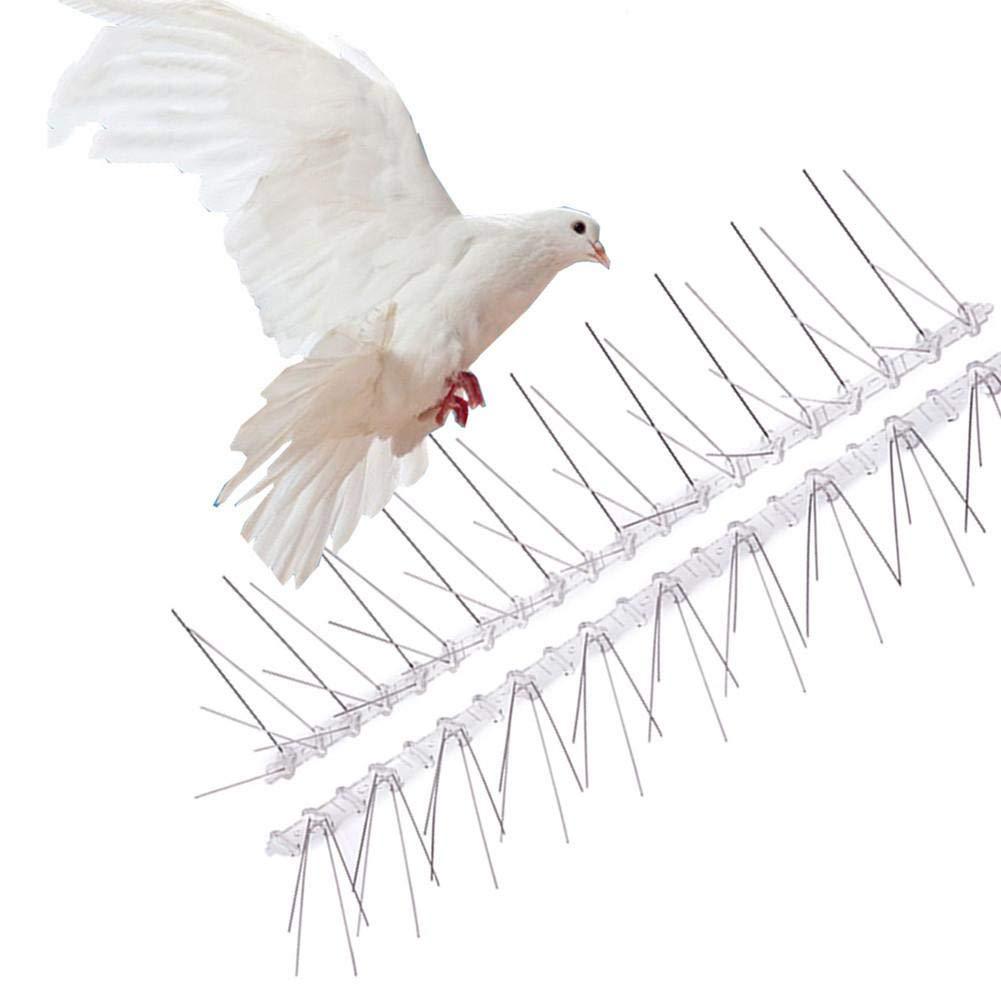 Protecci/ón Contra La Escalada Muro De Valla La Mejor Potencia Disuasiva De Aves Para Mantener A Todos Los P/ájaros 1PCS Bird Spikes Bird Reel Set Kit De U/ñas De Paloma Bird De Acero Inoxidable