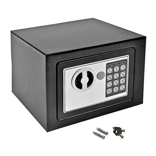 Digital Electronic Safe Box, 9.2'' x 6.8'' x 6.8'' Home Office Safes & Lock Boxes Security Safe w/ Digital Lock Includes Keys for Gun Cash Jewelry Valuable Storage by Holarose