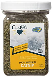 OurPets Premium North-American Grown Catnip, 2-1/4-Ounce Jar