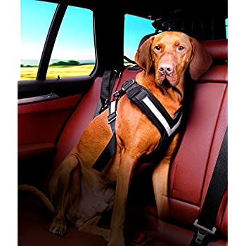 Image of Pet Supplies 4x4 North America The Original Allsafe Harness