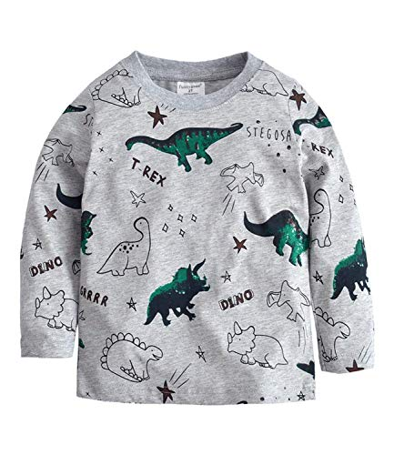 Birthday Sweatshirt Kids (Little Boys Dinosaur Sweatshirt Toddler Tops Tee Shirt 3D Printed T Rex Fun Dino Baby Long Sleeve Pullover Christmas Clothes)