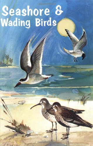 Seashore and Wading Birds of Florida
