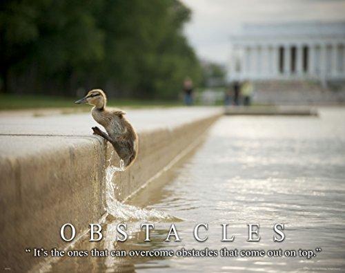 Democratic Republican Political Motivational Poster Art Print Lincoln Memorial Wall Decor Pictures