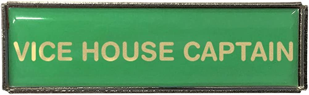 Vice House Captain Rectangle Polydome Budget Badge Silver Finish