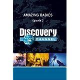 Amazing Babies - Episode 2