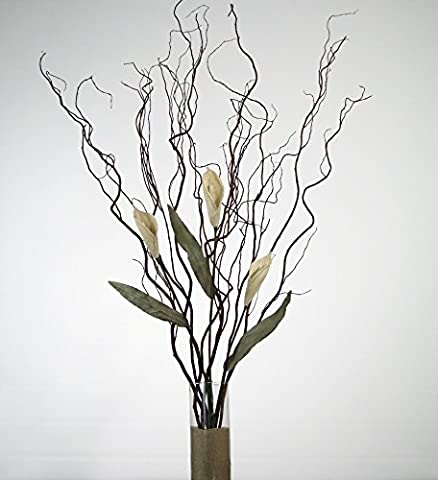 GreenFloralCrafts Curly Willow and White Calla Lilies (Vase Not Included) - Willow Natural Wood