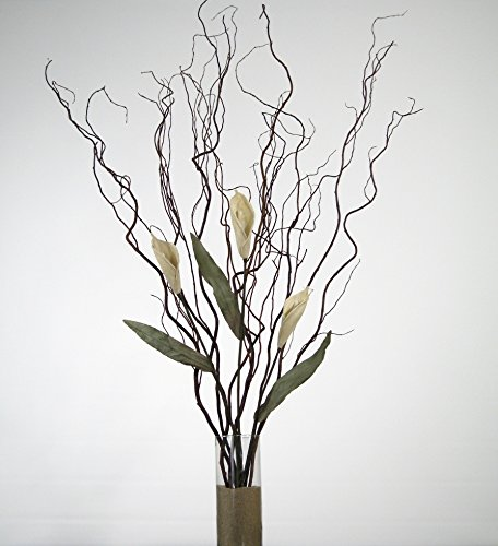 GreenFloralCrafts Curly Willow and White Calla Lilies (Vase Not Included) (Curly Stems Willow)