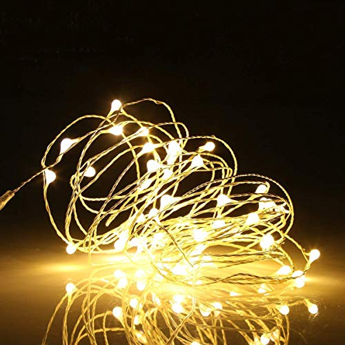 Ehome 100 LED 33ft/10m Starry Fairy String Light, Waterproof Decorative Copper Wire Lights for Indoor, Bedroom Festival Christmas Wedding Party Patio Window with USB Interface (Warm White)]()