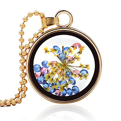 [G&T Women Small Fresh Dried Specimens of Glass Pendant Creative Sweater Chain Handmade Jewelry] (Titanic Costumes Ideas)