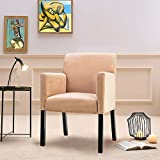 Harper & Bright Designs Accent Chair Stylish Arm Chair in Soft Fabric Living Room Furniture (bright beige)