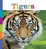 Seedlings: Tigers, Kate Riggs, 0898128897