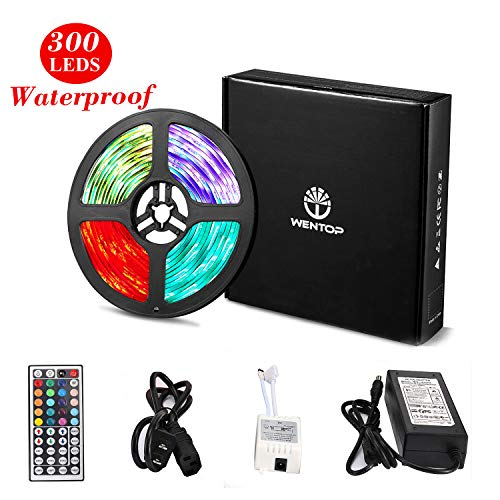 WenTop Led Strip Lights Kit DC12V Power Supply Waterproof SMD 5050 16.4 Ft (5M) 300leds RGB 60leds/m with 44key Ir Remote Controller for Kicthen Bedroom Sitting Room and Outdoor (Best Project 64 Plugins)
