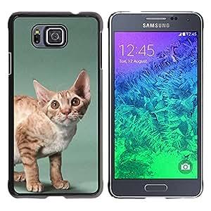 Be Good Phone Accessory // Dura Cáscara cubierta Protectora Caso Carcasa Funda de Protección para Samsung GALAXY ALPHA G850 // Javanese Devon Rex Big Ears Cat