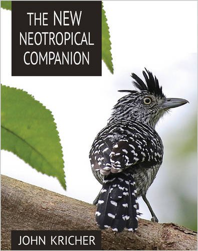 New Neotropical Companion